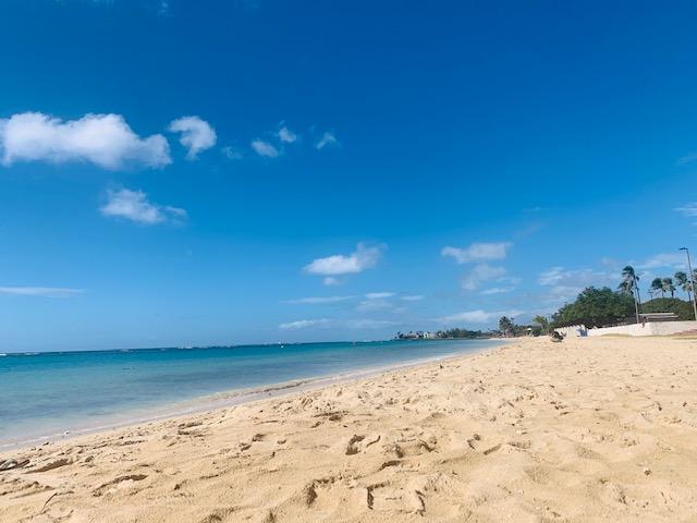 2021年、ハワイでお仕事してみませんか?;